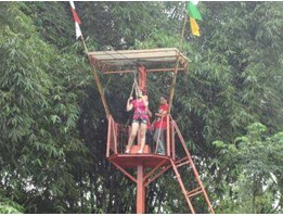 Jual flying fox