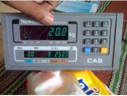 Jual CAS NT-503 WEIGHING INDICATOR