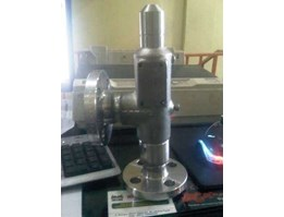 SAPAG Safety Relief Valve