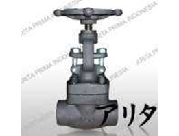 Jual Gate Valve Forged Steel to A105N Class 800 Lbs