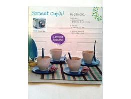 TUPPERWARE Moment Cup