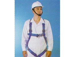 Jual Body Harness 2 Point Spanset