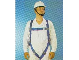Jual Body Harness 1 Point Spanset