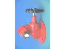 Jual Fire Angus-Valves Hydrant Bib-Nose flange 4x2.5in