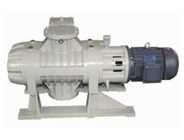 Jual ZJ Roots Vacuum Pump