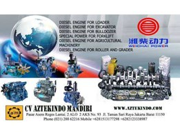 Jual WEICHAI DIESEL ENGINE FOR LOADER, DIESEL ENGINE FOR EXCAVATOR, DIESEL ENGINE FOR BULLDOZER, SPECIAL POWER FOR FORKLIFT, DIESEL ENGINE FOR AGRICULTURAL MACHINERY, DIESEL ENGINE FOR ROLLER AND GRADER AND BUS
