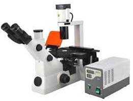 BS-7020 Inverted Fluorescent Biological Microscope