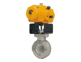 Jual High Performance Butterfly Valves Fisher® POSI-SEAL™ A41