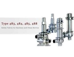 Safety Valves For Sanitary And Clean Service
