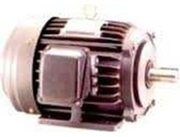 induction Motor LM