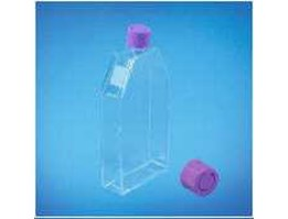 Tissue Culture Flask With Double Sealed, TC-Treated