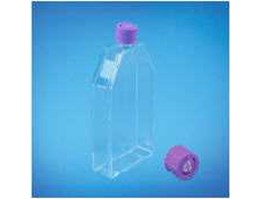 Tissue Culture Flask With Vented Cap - TC-Treated