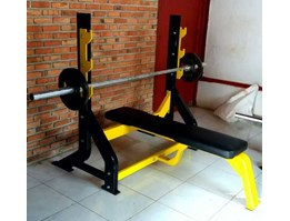 Bench Press (Manual)