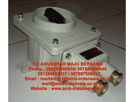 Jual Rotary Switch Explosion Proof HRLM BHZ51