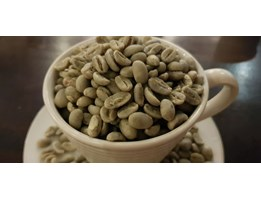 Jual Green Beans Arabica Gayo Specialty