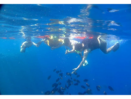 Bunaken Manado Fullday Tour