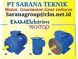 ELEKTRIM INDUCTION MOTOR AC B3 & B5