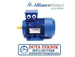 Alliance Motori Eco Drive Three Phase Motor A-Y3A