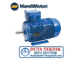 Marelli Motori Induction motor BAA