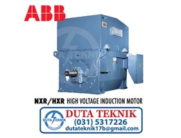 ABB High Voltage Induction Motor NXR/HXR
