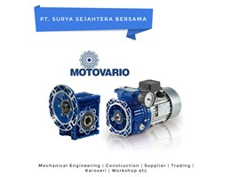 MOTOVARIO Electric Motor