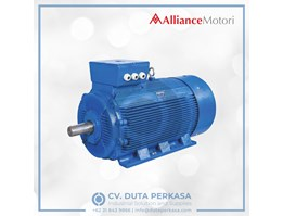Jual Alliance Motori Eco-Drive Motor Economic Type A-Y3e Series
