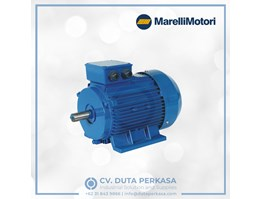 Jual Marelli Motor Squirrel Cage Induction Motor BAA Series