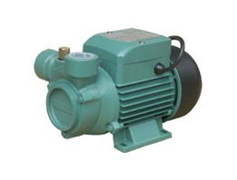 MORRIS - Water Pump MQ-100