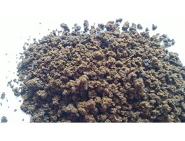 Jual Agglomerated Instant Coffee / Black Coffee / Kopi Hitam Instant