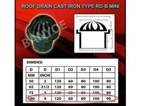 Roof Drain Cast Iron ( Type RD-B MINI)