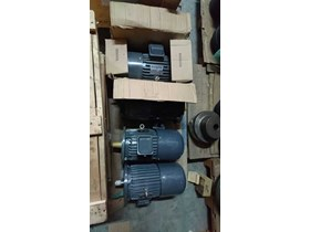 Electric Motor Teco with Brake