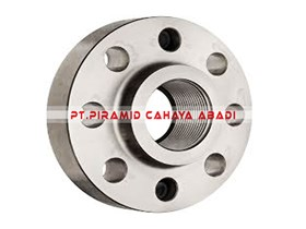 Threaded Flange Stainless
