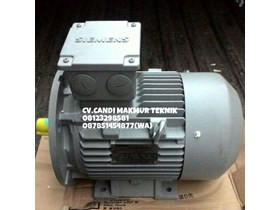 Induction Motor 3 Phase foot mounted / flange mounted