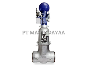Flexible Split Wedge Gate Valves - Equiwedge Main Feedwater Isolation Valve