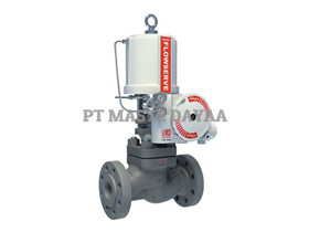 Globe/Angle Control Valves - Mark One