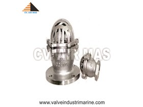 FOOT VALVE FLANGE END