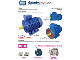 Electric Motor Elektrim