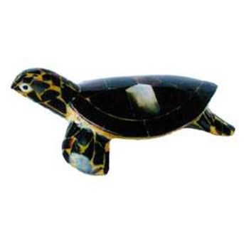 turtle crafts shell