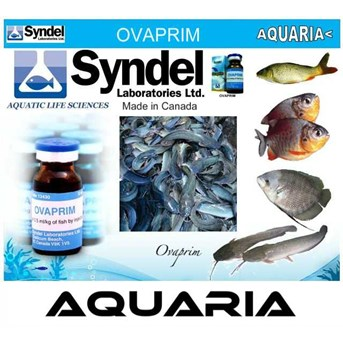 OVAPRIM produk SYNDEL AQUATIC SCIENCE TECHNOLOGY from CANADA