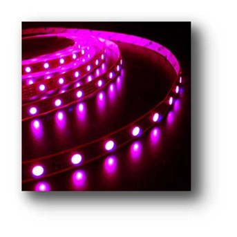LED Strip 5050 Outdoor