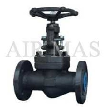 GLOBE VALVE FORGED STEEL # 800