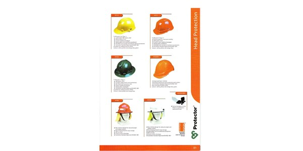 head protection protector