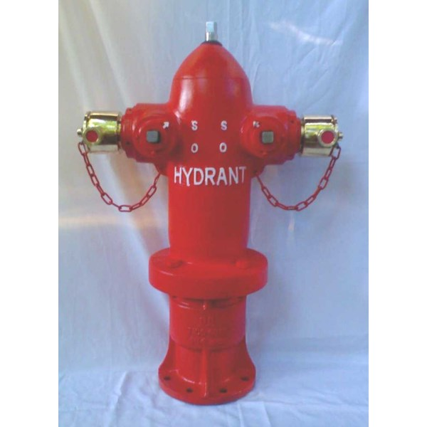 hydrant pillar two way with instantaneous coupling
