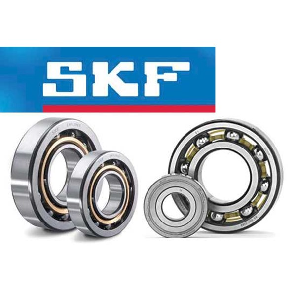 skf bearing, skf ball bearing, skf linier bearing, skf cylindrical bearing skf tappered roller bearing com flowers, ball transfers spherical bearing