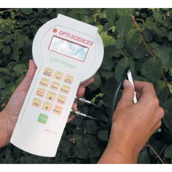 green fluorescent protein ( gfp) meter
