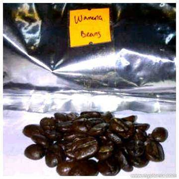 greenbean coffee papua baliem-1