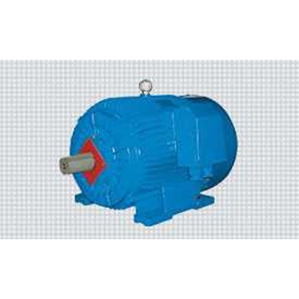elektrim motors & machinery - slip ring motors-2