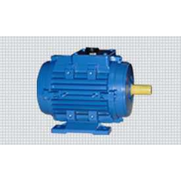 elektrim motors & machinery - slip ring motors-5