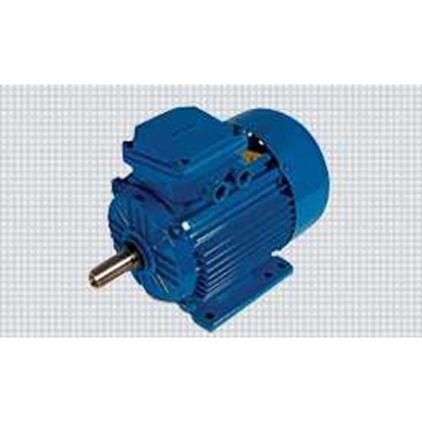 elektrim motors & machinery - slip ring motors-1