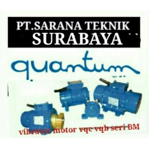vibrator motor quantum, ceramic industri, vibrating screen-4
